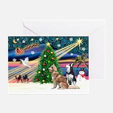 Xmas Magic & S Husky Greeting Cards (Pk of 20)