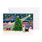 Xmas Magic & Silk Ter Greeting Card