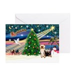 Xmas Magic/Silk Ter Greeting Cards (Pk of 20)
