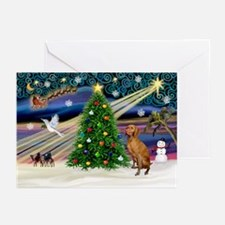 Xmas Magic & Vizsla Greeting Cards (Pk of 20)