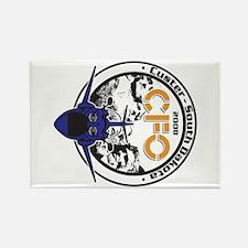 CFO Rectangle Magnet (10 pack)