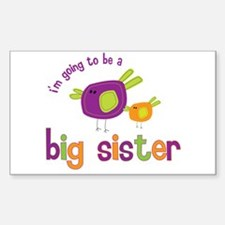 big sister t-shirts birdie Rectangle Decal