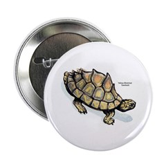 Yellow-Blotched Sawback Turtle 2.25