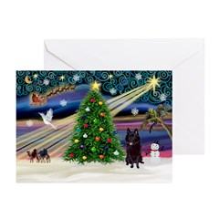 XmasMagic/Schipperke (#4) Greeting Cards(Pk of 20)