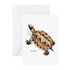 Wood Turtle Greeting Cards (Pk of 10)