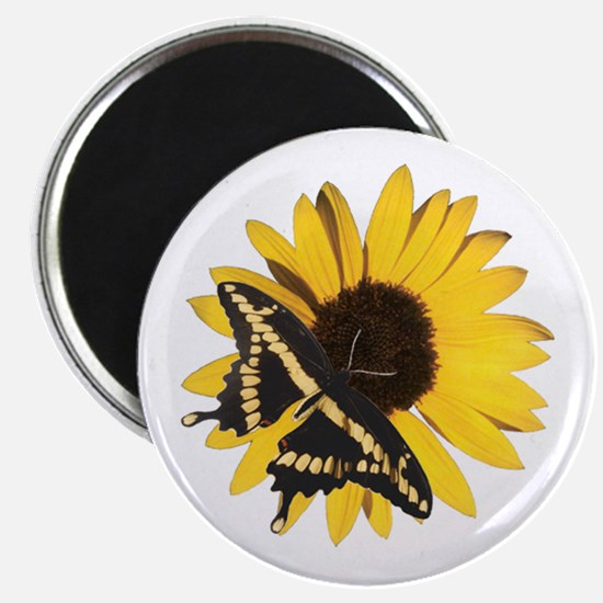Giant Swallowtail and Sunflower Magnet