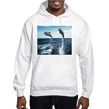 Dolphins In The Ocean Hooded Sweatshirt