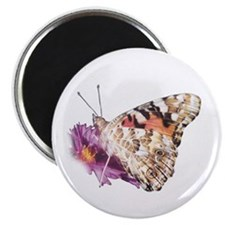 Painted Lady Magnet (with wings closed)