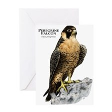 Peregrine Falcon Greeting Card