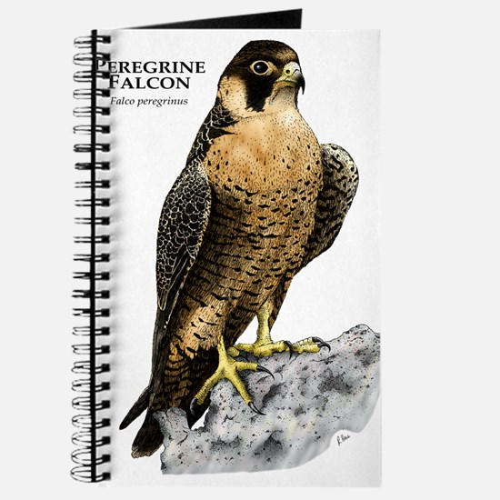 Peregrine Falcon Journal