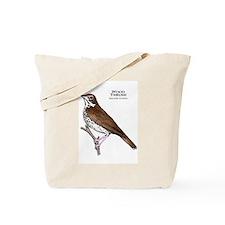 Wood Thrush Tote Bag