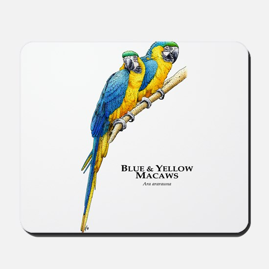 Blue & Yellow Macaws Mousepad