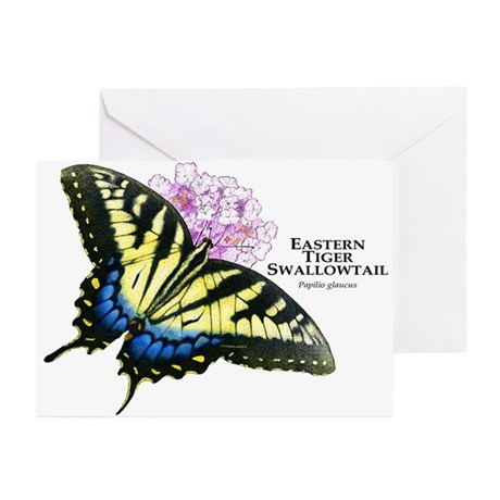 Eastern Tiger Swallowtail Butterfly Greeting Cards