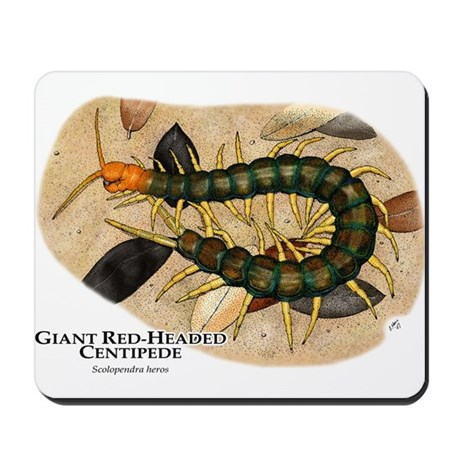 Giant Red-Headed Centipede Mousepad