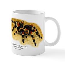 Mexican Red-Kneed Tarantula Mug