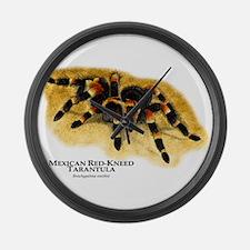 Mexican Red-Kneed Tarantula Giant Clock