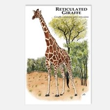 Reticulated Giraffe Postcards (Package of 8)