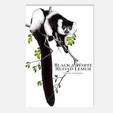 Black & White Ruffed Lemur Postcards (Package of 8