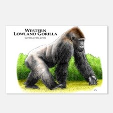 Western Lowland Gorilla Postcards (Package of 8)