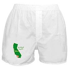 California Earthquake Boxer Shorts