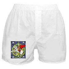 Trotsky Slaying the Dragon Boxer Shorts