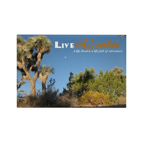 Live Adventure Joshua Tree Rect. Magnet (10 pack)