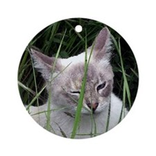 Winking Cat (Paint) Ornament (Round)