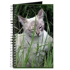 Winking Cat (Paint) Journal