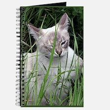 Winking Cat (Paint) Journal