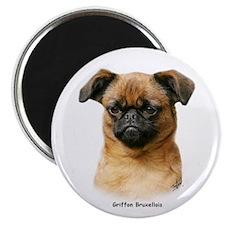 Griffon Bruxellois 9Y406D-129 Magnet