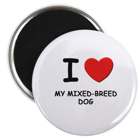 """I love MY MIXED-BREED DOG 2.25"""" Magnet (10 pack)"""