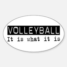 Volleyball Is Oval Decal