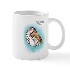 Chambered Nautilus Mug