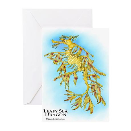 Leafy Sea Dragon Greeting Cards (Pk of 20)