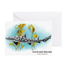 Leopard Shark Greeting Cards (Pk of 20)