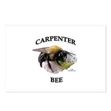 Carpenter Bee Postcards (Package of 8)