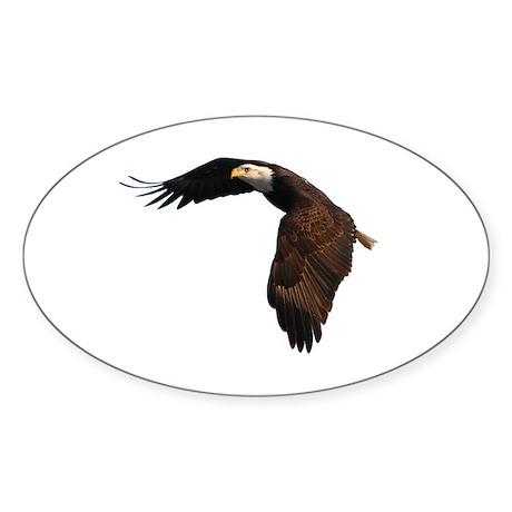 Bald Eagle Oval Sticker (50 pk)