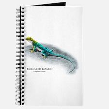 Collared Lizard Journal