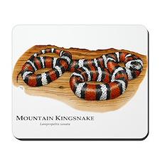 Mountain Kingsnake Mousepad