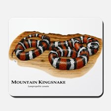 Mountain Kingsnake Mousepad