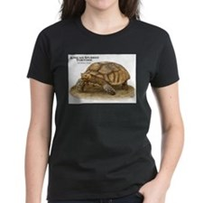 African Spurred Tortoise Tee