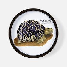 Indian Star Tortoise Wall Clock