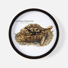 Leopard Tortoise Wall Clock