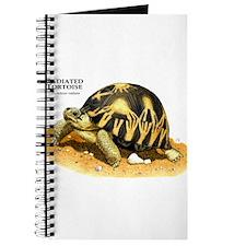 Radiated Tortoise Journal