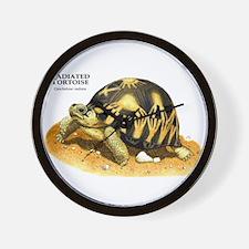 Radiated Tortoise Wall Clock