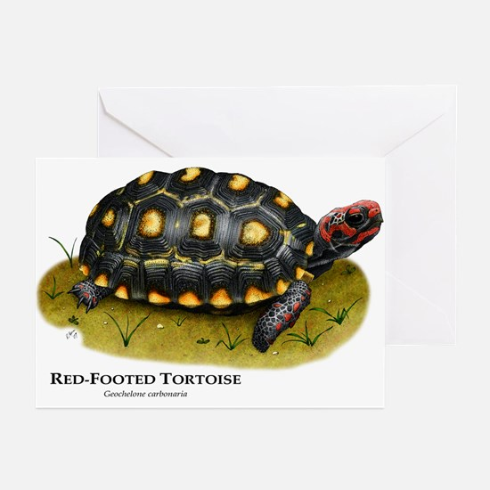 Red-Footed Tortoise Greeting Cards (Pk of 10)