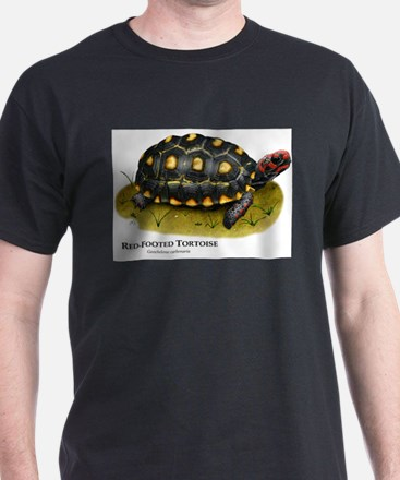 Red-Footed Tortoise T-Shirt