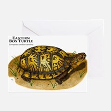 Eastern Box Turtle Greeting Cards (Pk of 20)