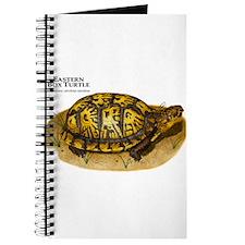 Eastern Box Turtle Journal
