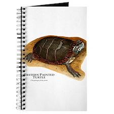 Eastern Painted Turtle Journal